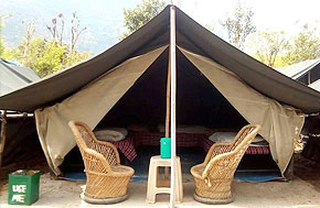 Alpine Camping in Rishikesh
